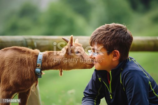 kid with baby goat at petting zoo