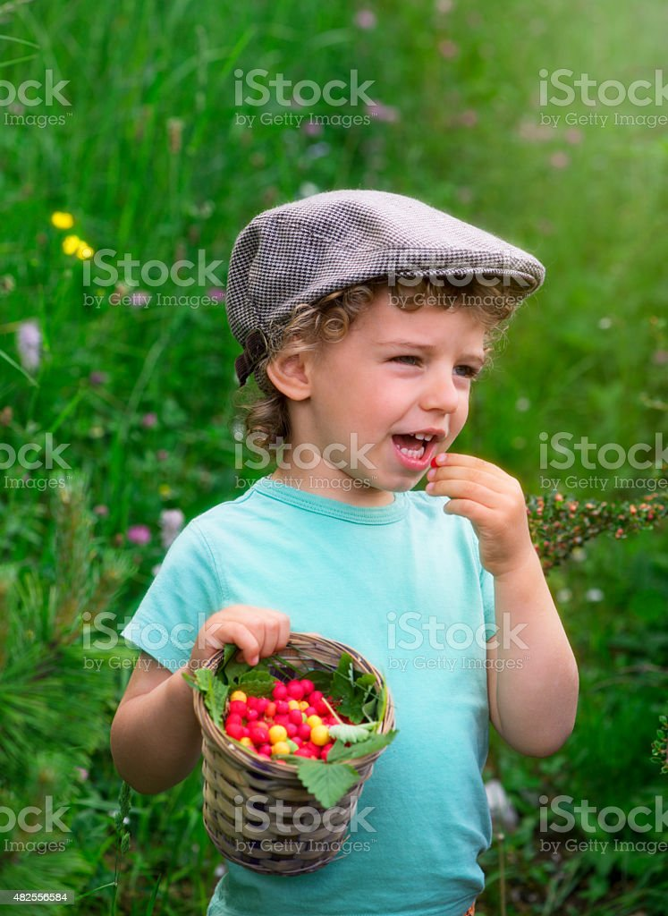 Kid with Berries stock photo