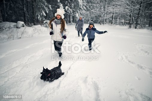 Two kids with grandmother walking in winter forest. The family is walking with dog, running and having fun.  Focus on the dog. Nikon D850