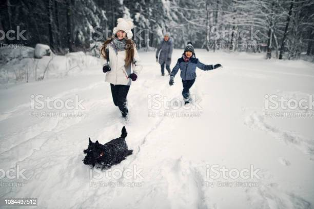Kids and grandmother running with dog in winter forest picture id1034497512?b=1&k=6&m=1034497512&s=612x612&h=zevqofcjtsulwojscyxeyjskegadalfrt1ksbmxz ri=