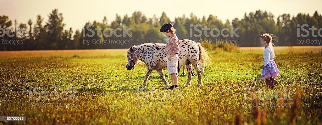 Kids and pony stock photo