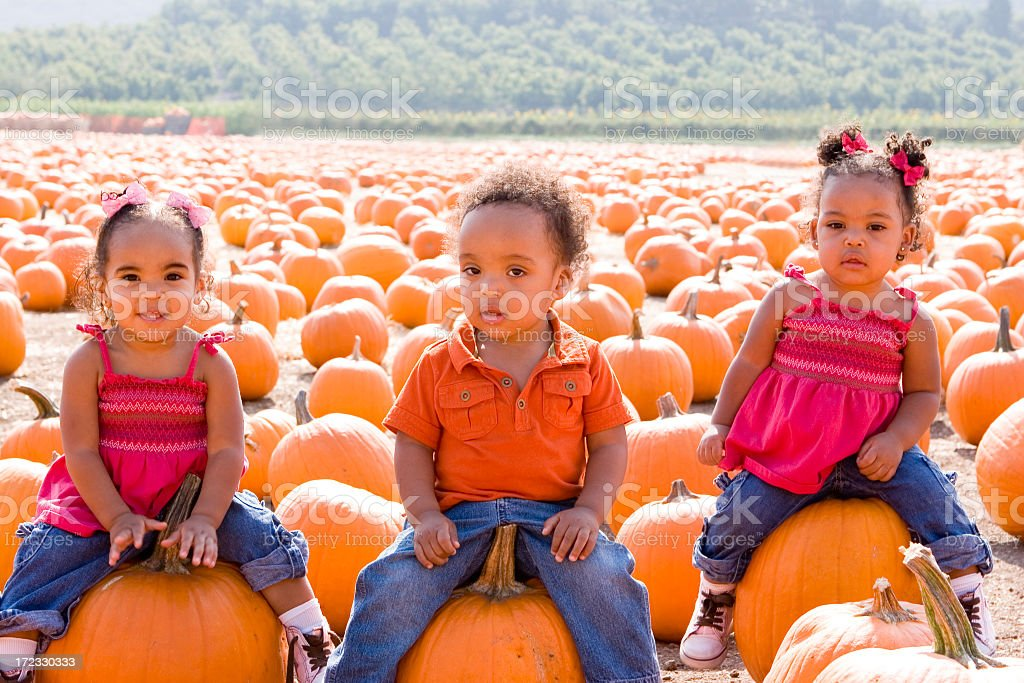 Kids at a pumpkin patch royalty-free stock photo