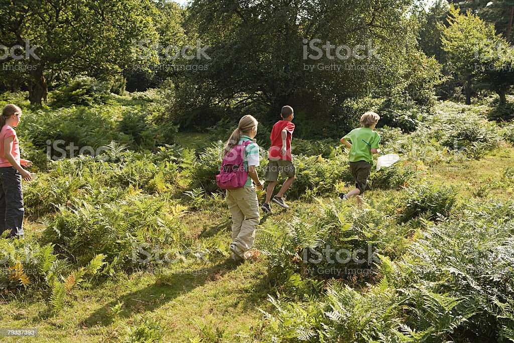 Kids at nature reserve 免版稅 stock photo