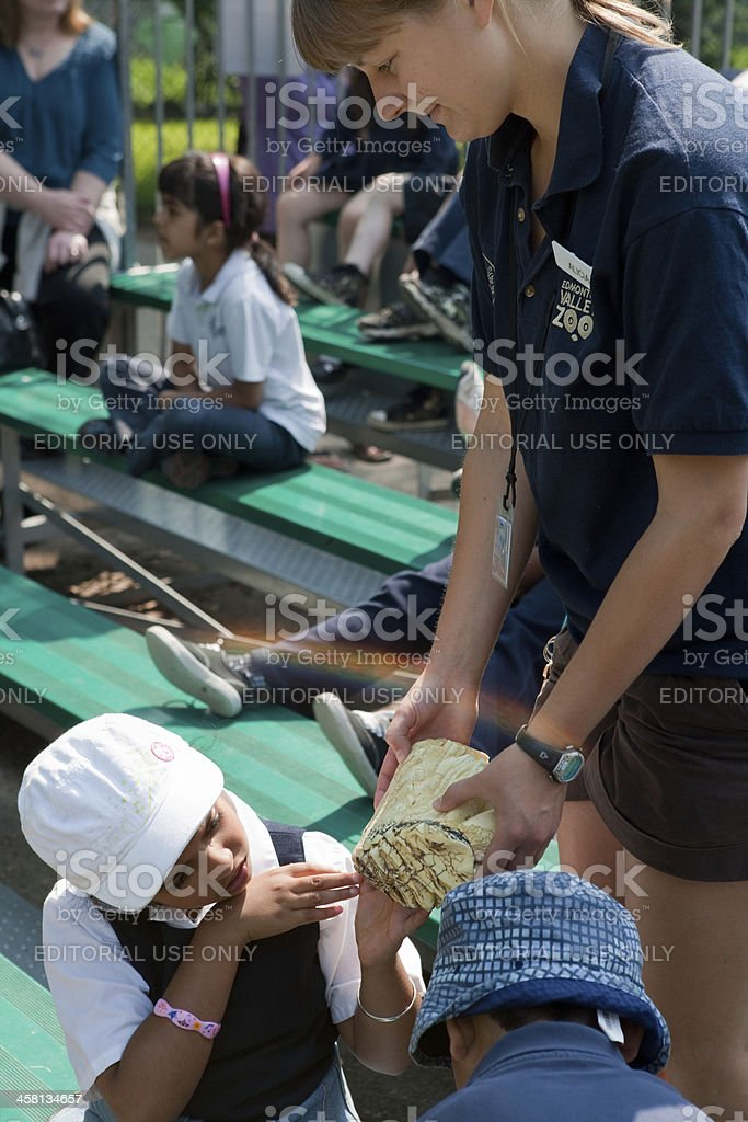 Kids at the Zoo royalty-free stock photo