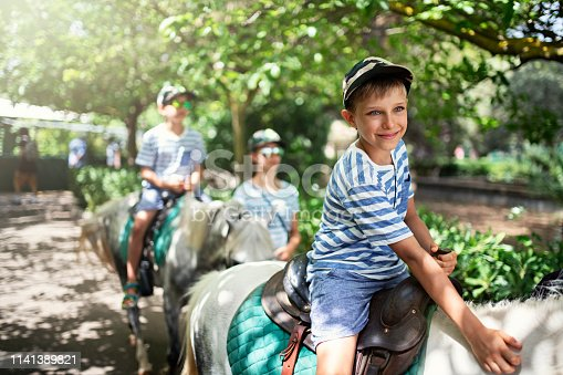Kids enjoying pony ride. Little boy is smiling and petting the pony. Sunny summer day. Nikon D850