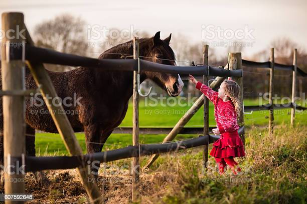 Kids feeding horse on a ranch picture id607592648?b=1&k=6&m=607592648&s=612x612&h=2n3j cn7wiqeykvyeqpfza45olkys86zxl435299nii=