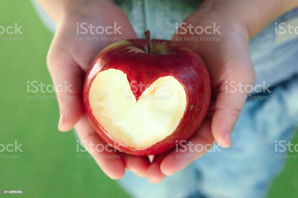 Kids hands with apple stock photo