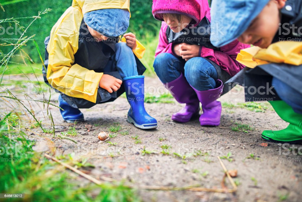 Kids hikers observing a snail stock photo