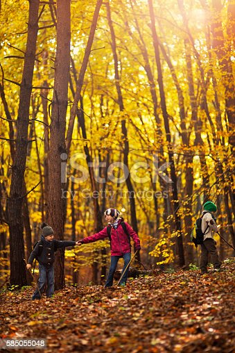 515278306 istock photo Kids hiking in autumn forest 585055048