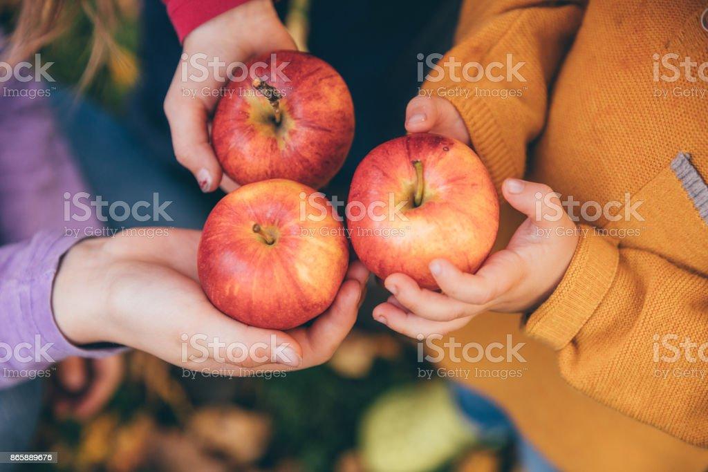 Kinder in einem Obstgarten mit roten Äpfeln – Foto