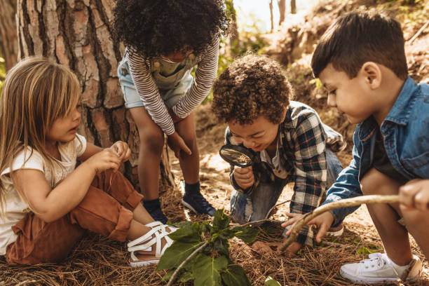 Kids in forest with a magnifying glass Children in forest looking at leaves as a researcher together with the magnifying glass. jacoblund stock pictures, royalty-free photos & images