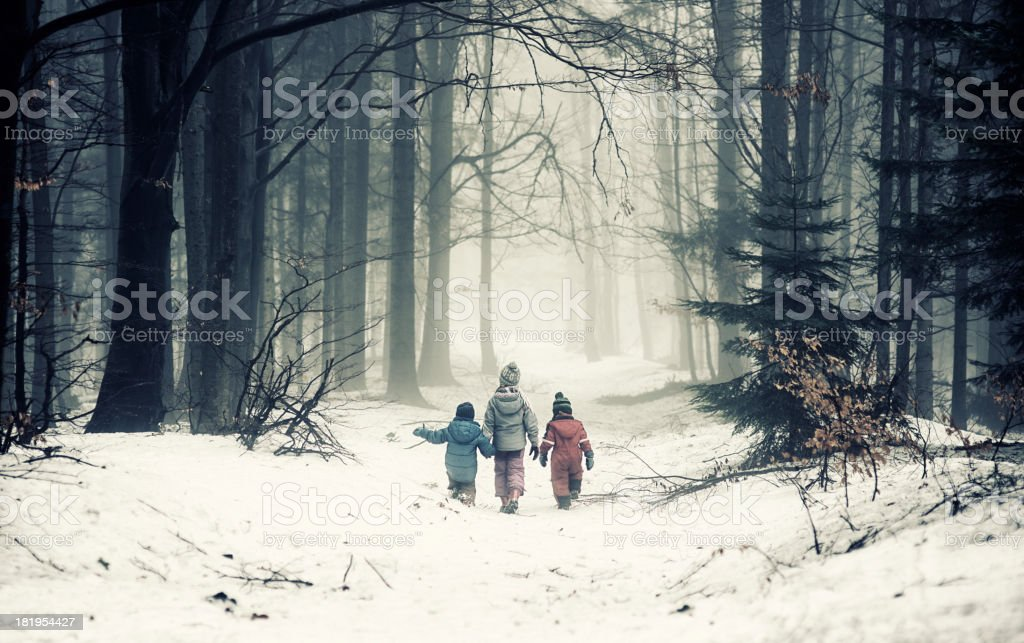 Kids in misty forest stock photo