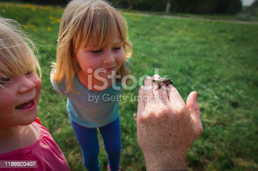525737167 istock photo kids learning - kids looking at and exploring lizard in nature 1199920407