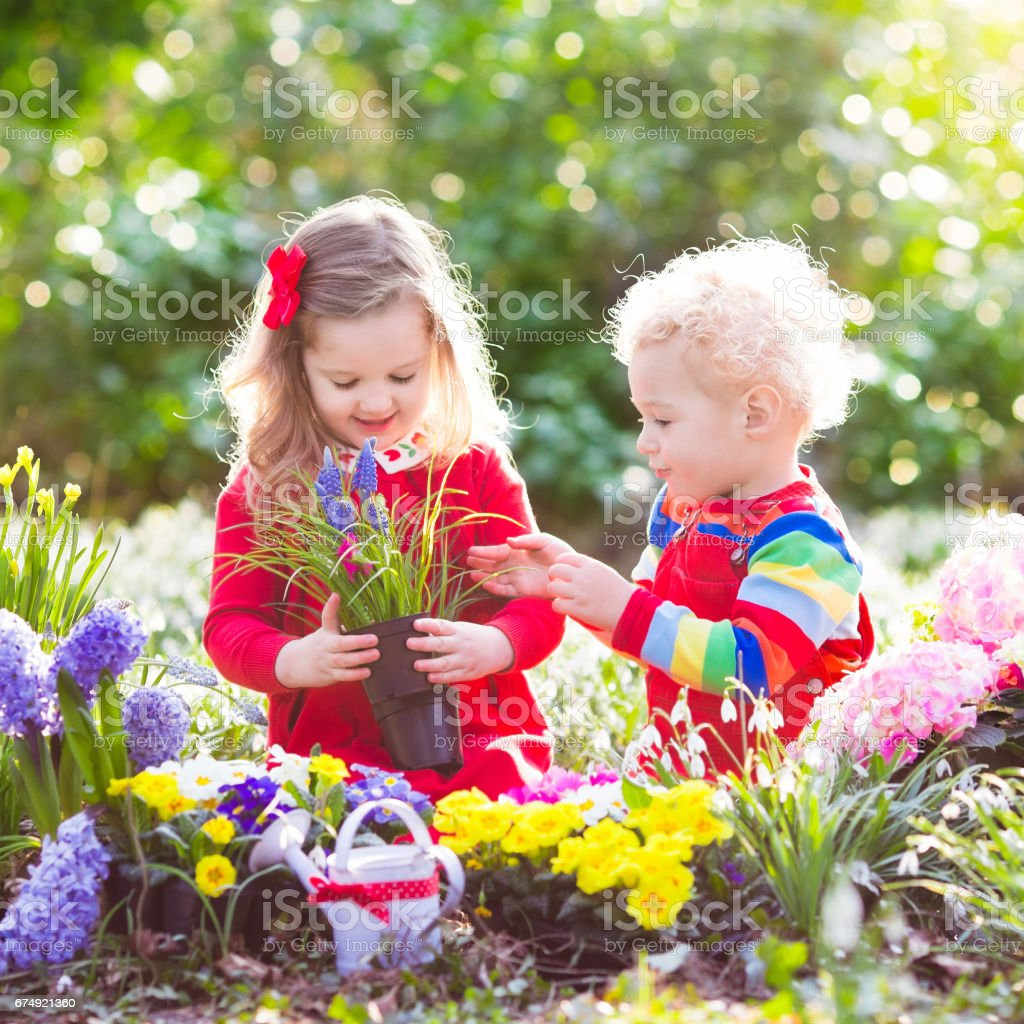 Kids plant and water flowers in spring garden royalty-free stock photo
