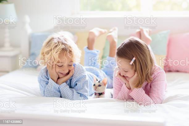 Kids play with baby cat child and kitten in bed picture id1167435860?b=1&k=6&m=1167435860&s=612x612&h=qdqffn x 3ptddtauehogbzcne3yzpsrtgqphwce 0a=