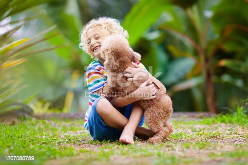 Kids play with cute little puppy. Children and baby dog playing in sunny summer garden. Little boy holding puppies. Child with pet.  Family and pets on park lawn. Kid and animals friendship.