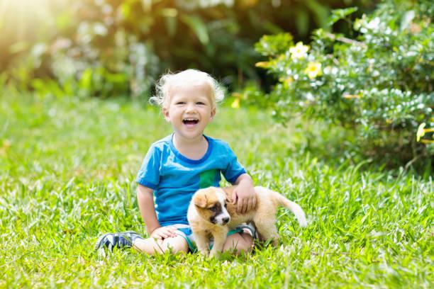 Kids play with puppy children and dog in garden picture id955796234?b=1&k=6&m=955796234&s=612x612&w=0&h=rhspwyl7lmvcsz  il84wsmftyyzlxzpkx8xemdhtni=
