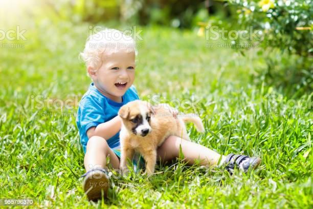 Kids play with puppy children and dog in garden picture id955796370?b=1&k=6&m=955796370&s=612x612&h=iu9bpvkiwopapiln16c1n511mlkitzoozug8k0 nmdg=