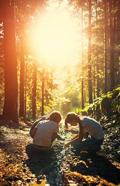 kids playing in a small stream on forest path - bos spelen stockfoto's en -beelden
