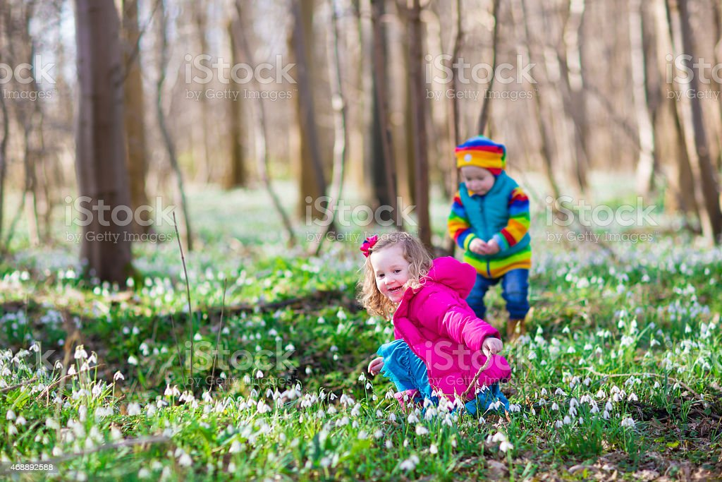 Kids playing in a spring forest stock photo