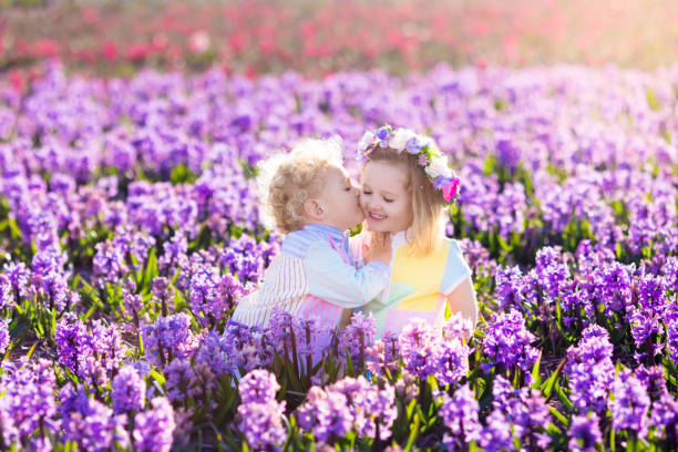 kids playing in blooming garden with hyacinth flowers - little girls little boys kissing love stock photos and pictures