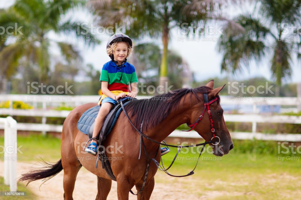Kids Ride Horse Child On Pony Horseback Riding Stock Photo Download Image Now Istock