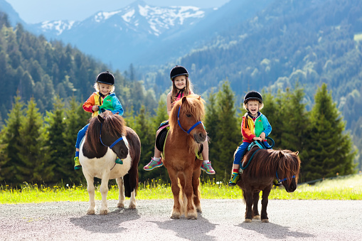 istock Kids riding pony. Child on horse in Alps mountains 1125710596