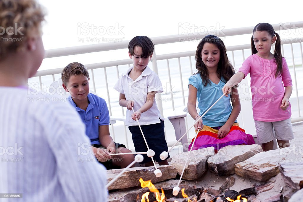 Kids roasting marsh mellows royalty-free stock photo