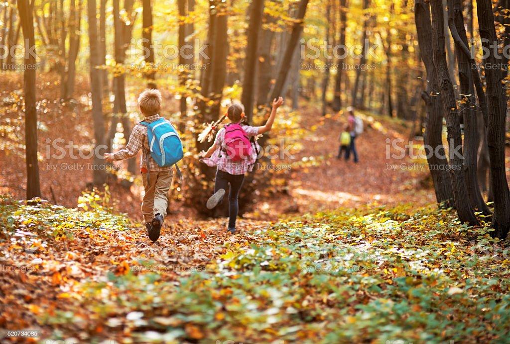 Kids running in autumn beech forest stock photo