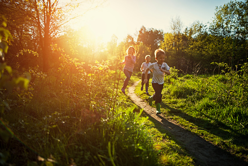 Happy children running on a path in forest clearing. Sunny spring evening. Sun is shining beautifully