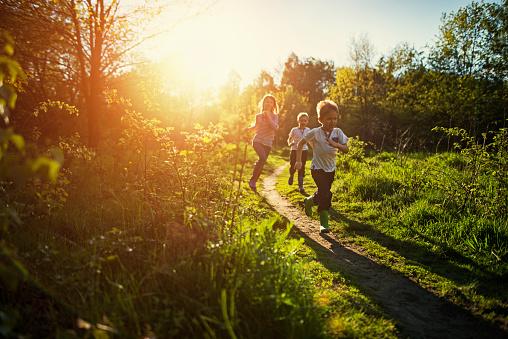Kids running in nature. stock photo