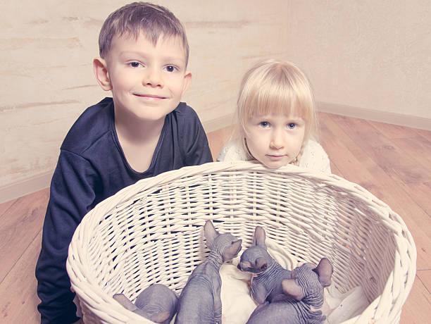 Kids smiling at camera behind sphynx kittens picture id492551832?b=1&k=6&m=492551832&s=612x612&w=0&h=j2e5qp0kumlmworocjvxkpxwnilo5cqzlzk2jgtrfoi=