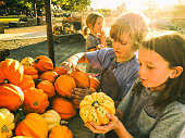 Kids playing and exploring in a pumpkin patch on a school field trip.