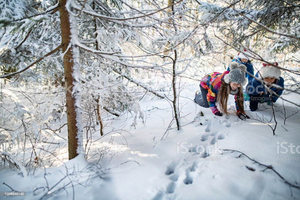 Kids tracking animal prints in winter forest stock photo