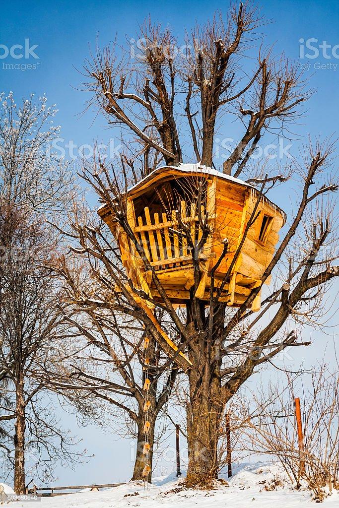 Kids treehouse stock photo