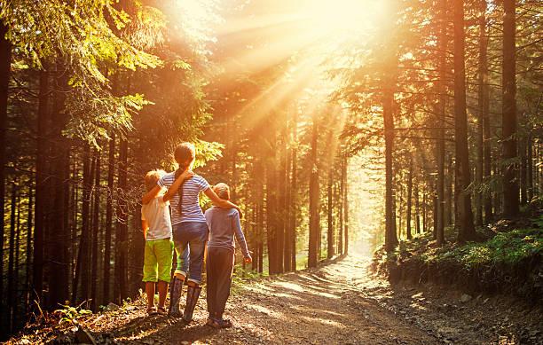kids watching beautiful sun beams in forest - bos spelen stockfoto's en -beelden