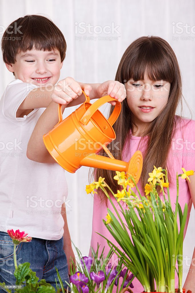 Kids watering flowers royalty-free stock photo