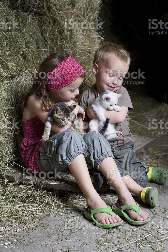 Kids with Cats stock photo