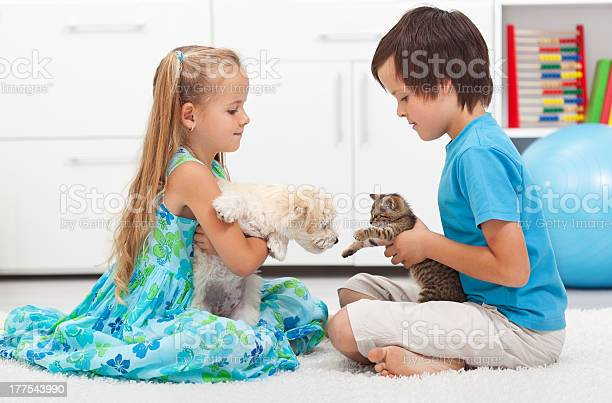 Kids with their pets dog and cat picture id177543990?b=1&k=6&m=177543990&s=612x612&h=kmn arg8 aua6pcnaknfdit8rxrlwawvb3kegnihois=
