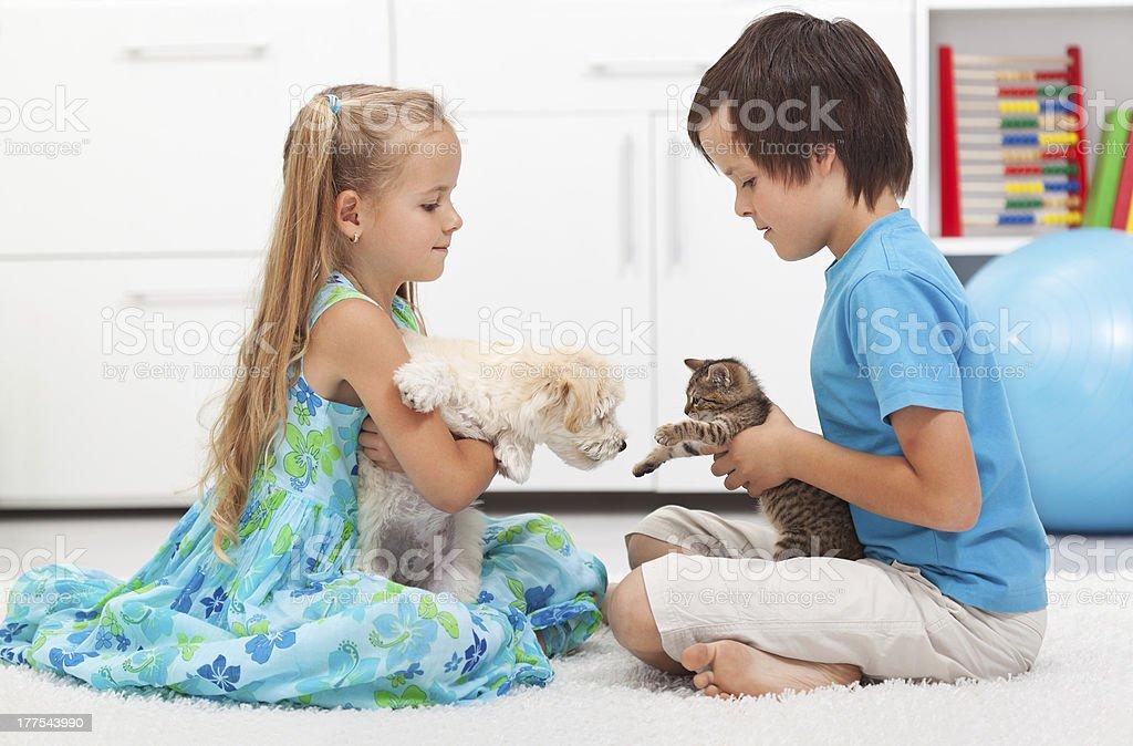 Kinder mit ihren Haustieren-Hund und Katze – Foto