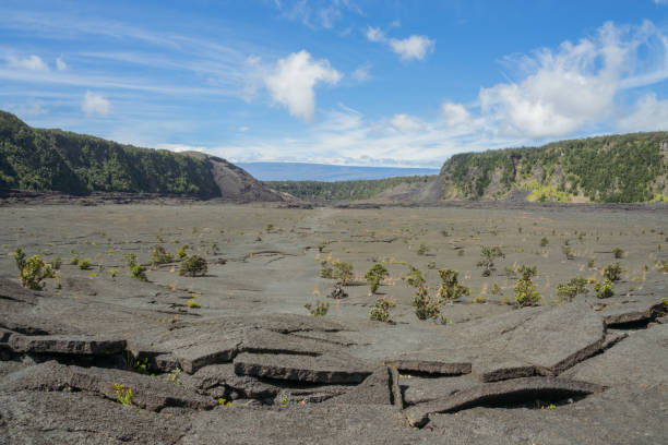 kilauea iki trail landscape - desolated stock pictures, royalty-free photos & images