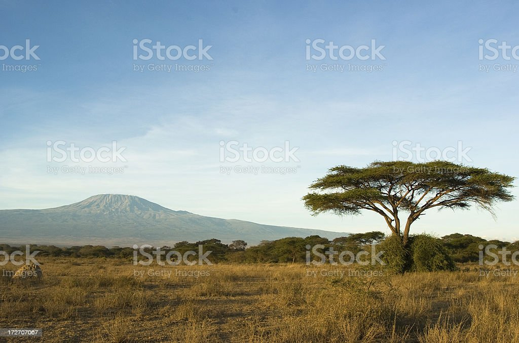 Kilimandjaro - Photo