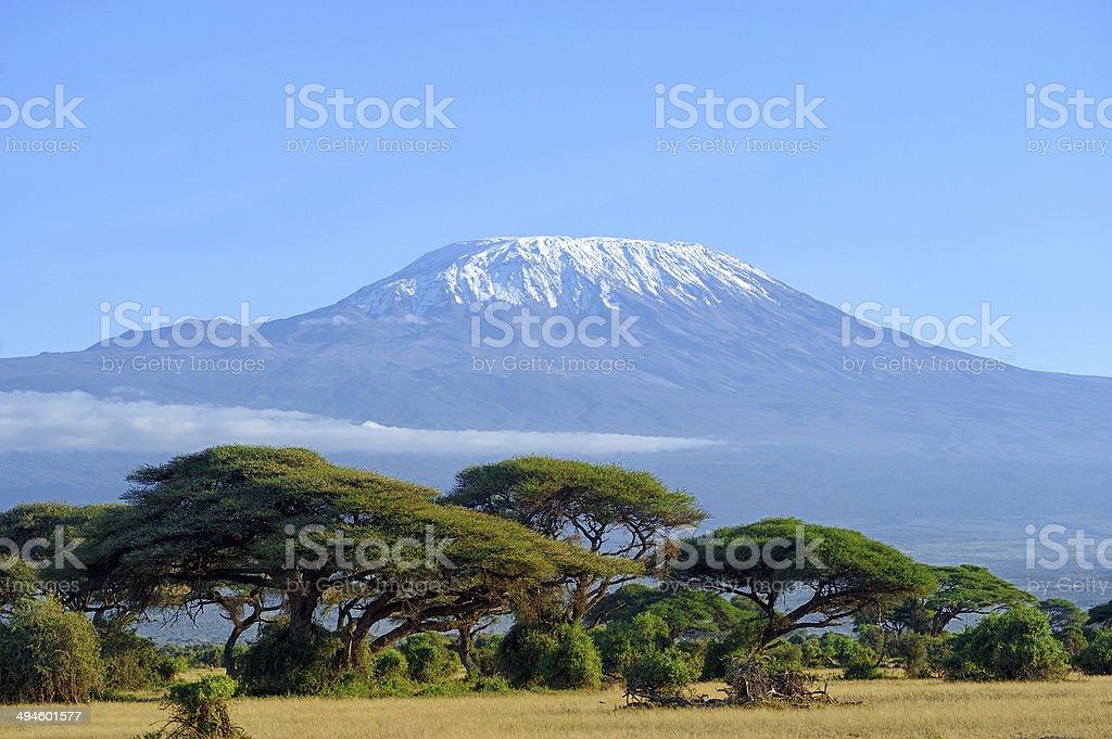Kilimanjaro Snow on top of Mount Kilimanjaro in Amboseli Africa Stock Photo