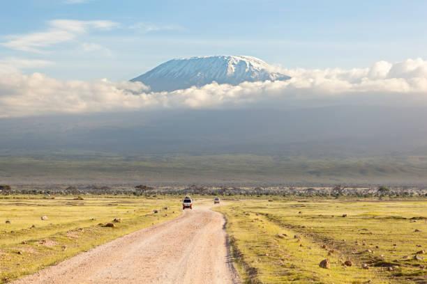 Kilimanjaro with snow cap stock photo