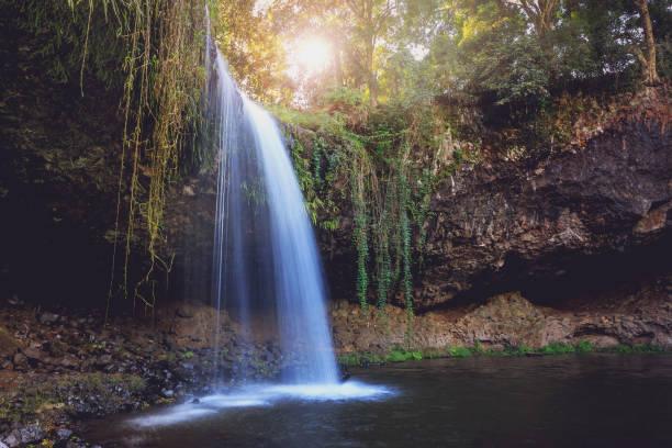 Killen Falls-orörda vattenfall Australien bildbanksfoto