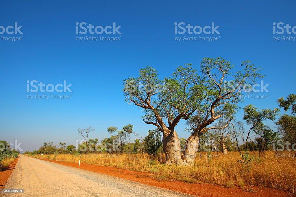 Kimberley, Western Australia bildbanksfoto