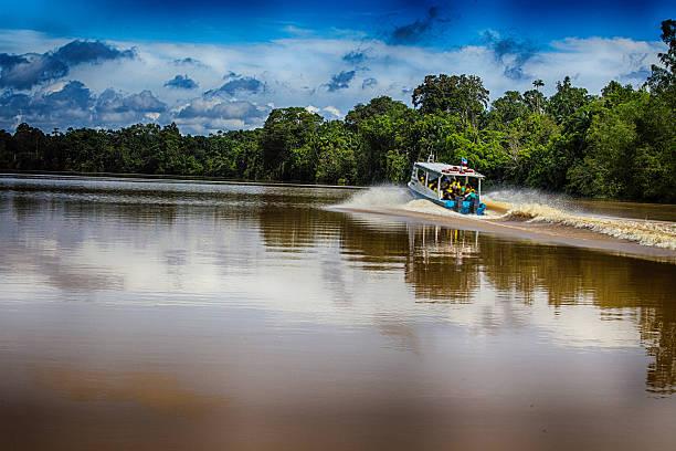 Kinabatangan River – Foto