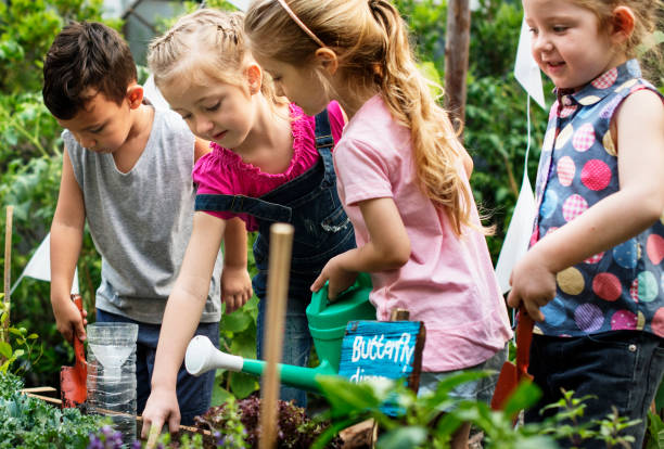 Kindergarten kids learning gardening outdoors Kindergarten kids learning gardening outdoors field trip stock pictures, royalty-free photos & images