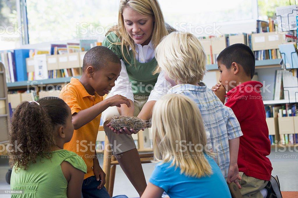 Kindergarten teacher and kids examine bird's nest stock photo
