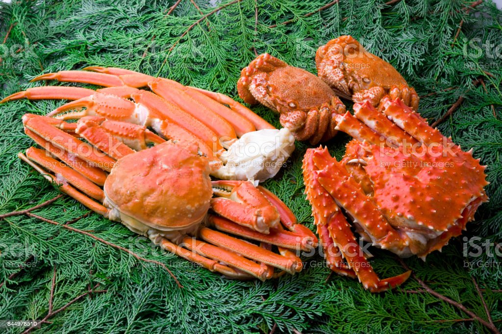 King Crab And Snow Crab Chionoecetes Opilio Stock Photo - Download Image Now